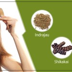 Explore the Best Remedies for Dandruff